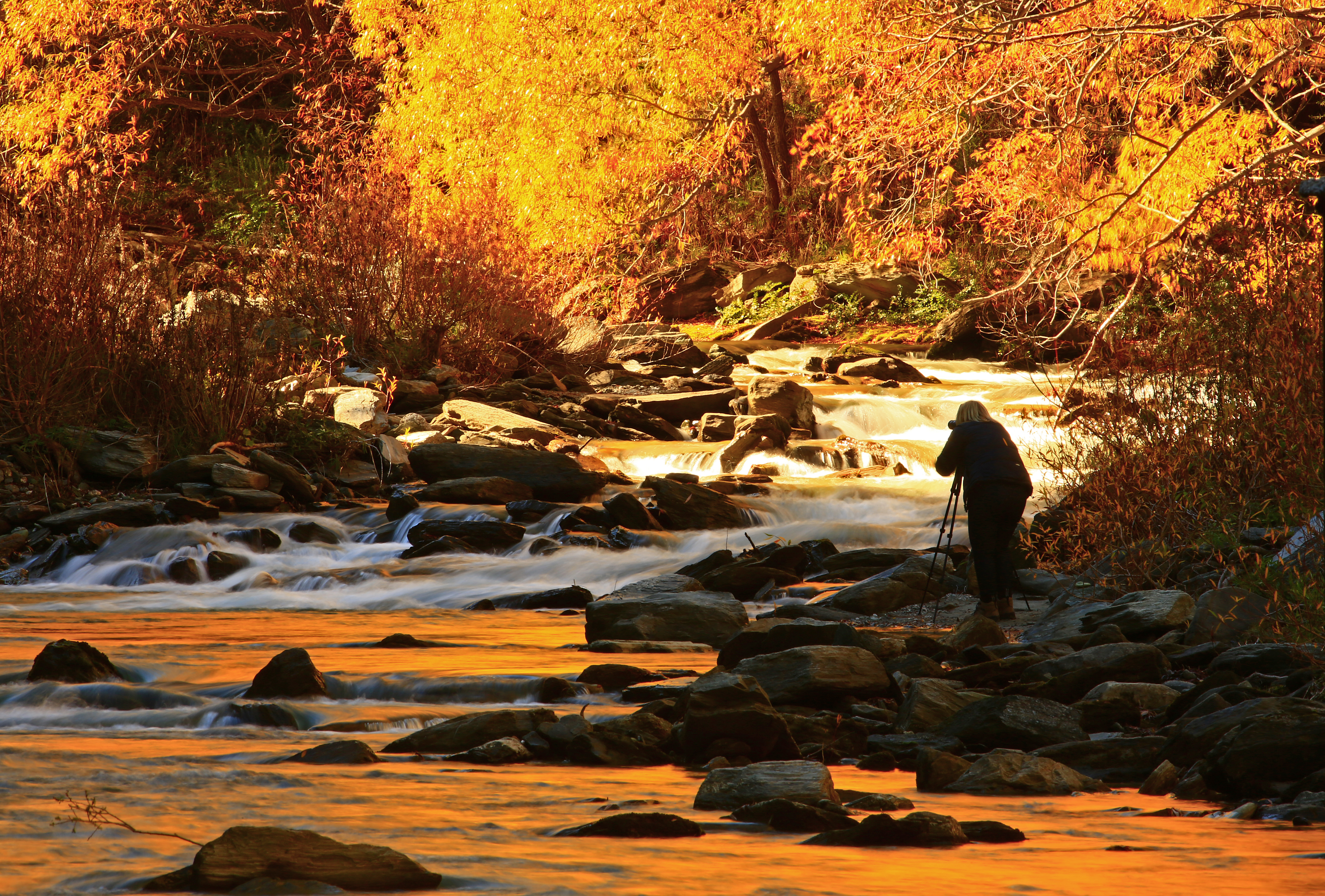 Photographing the Arrow River in Autumn 1